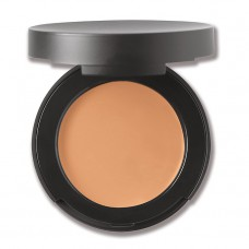 Correcting Concealer SPF20 2g - Tan 2